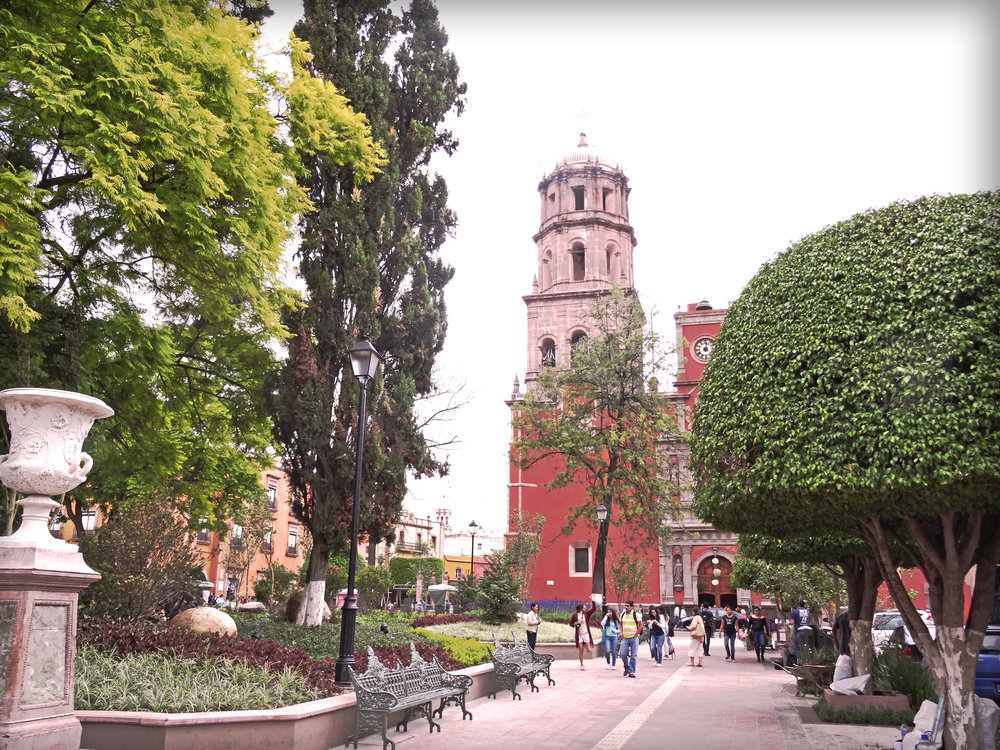 Jardín ZeneaSombra.jpg