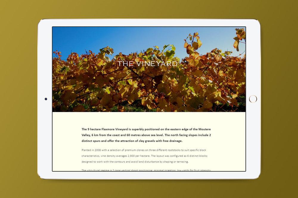 Flaxmore - the vineyard 2.jpg