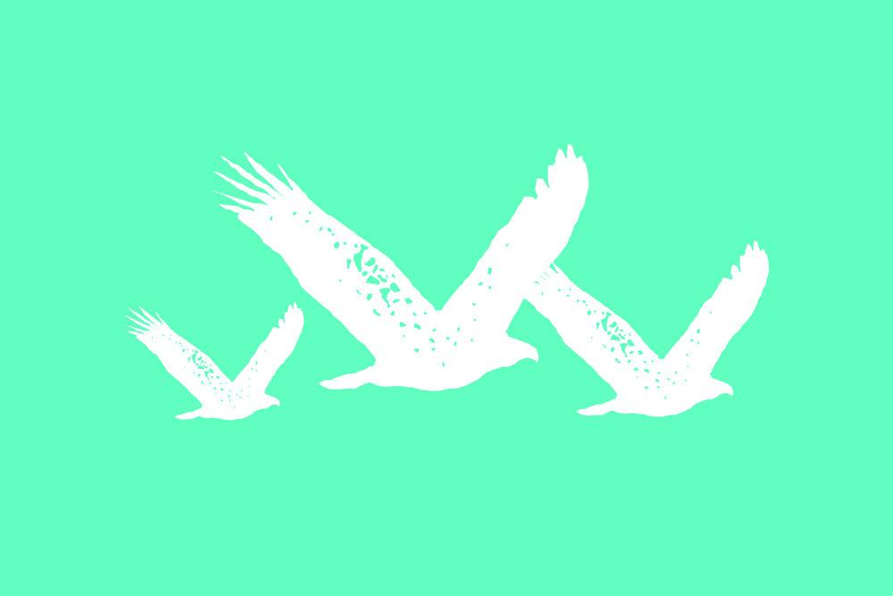 Flock Birds.jpg