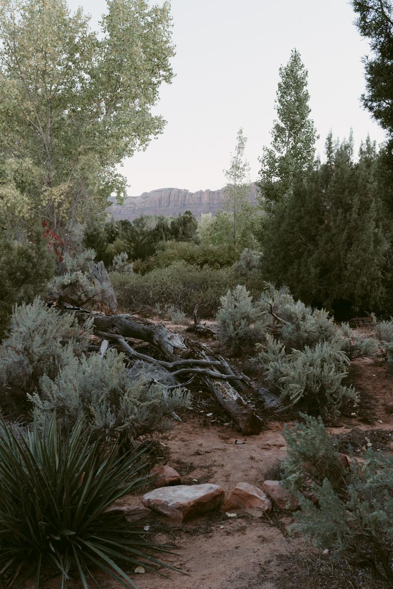 moab_desert_landscape_photography.jpg