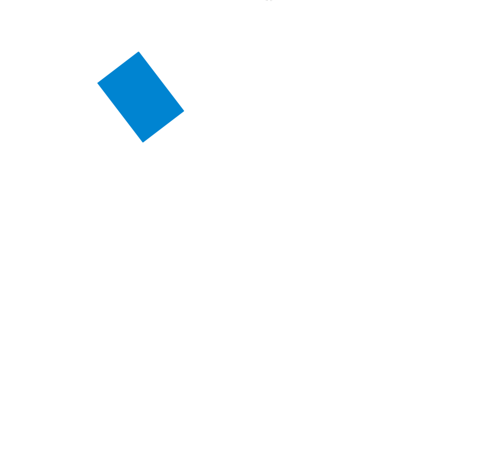 RAPB Leadership Logo white.png