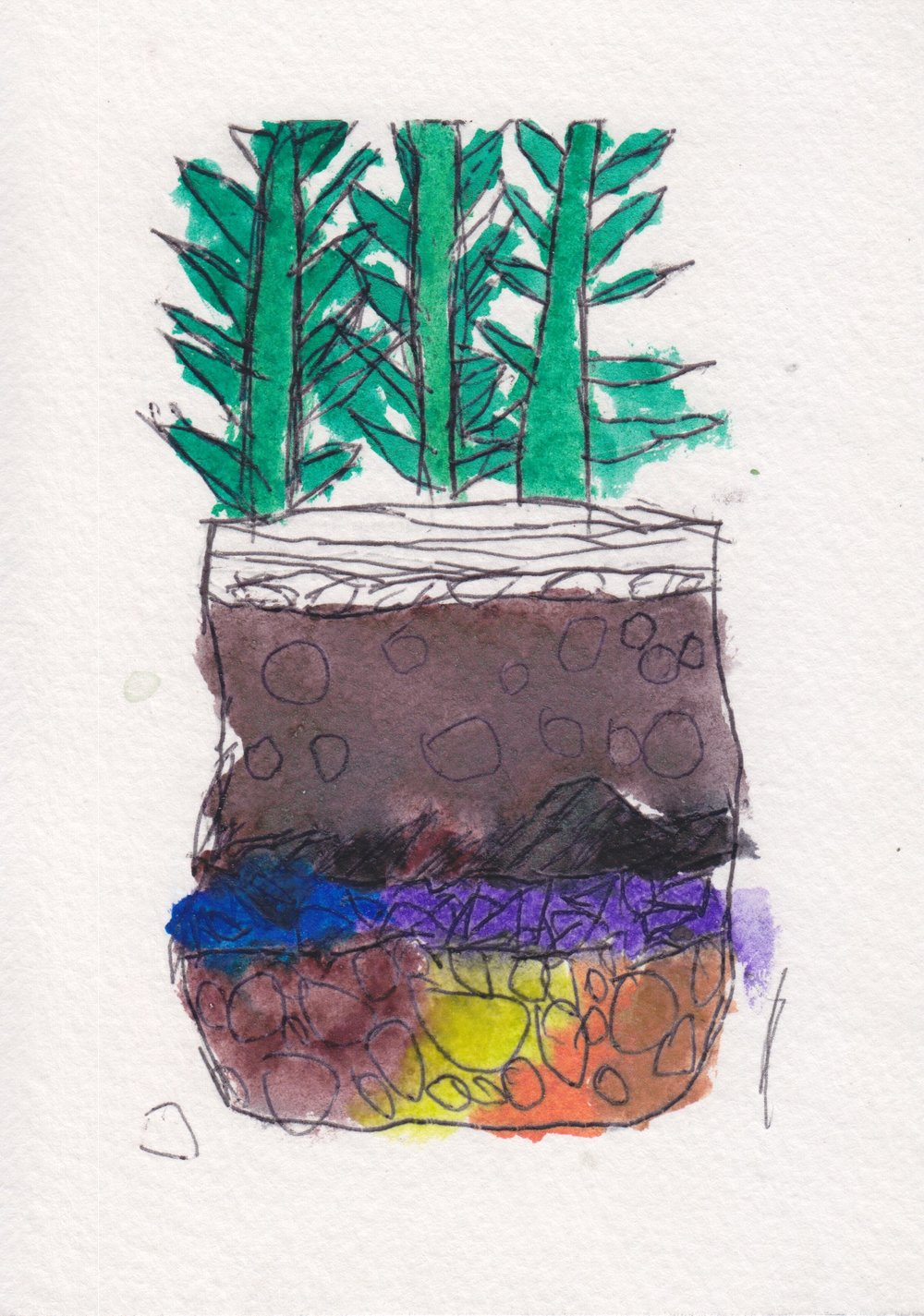 centro_watercolor terrarium_JulianPerez.jpeg