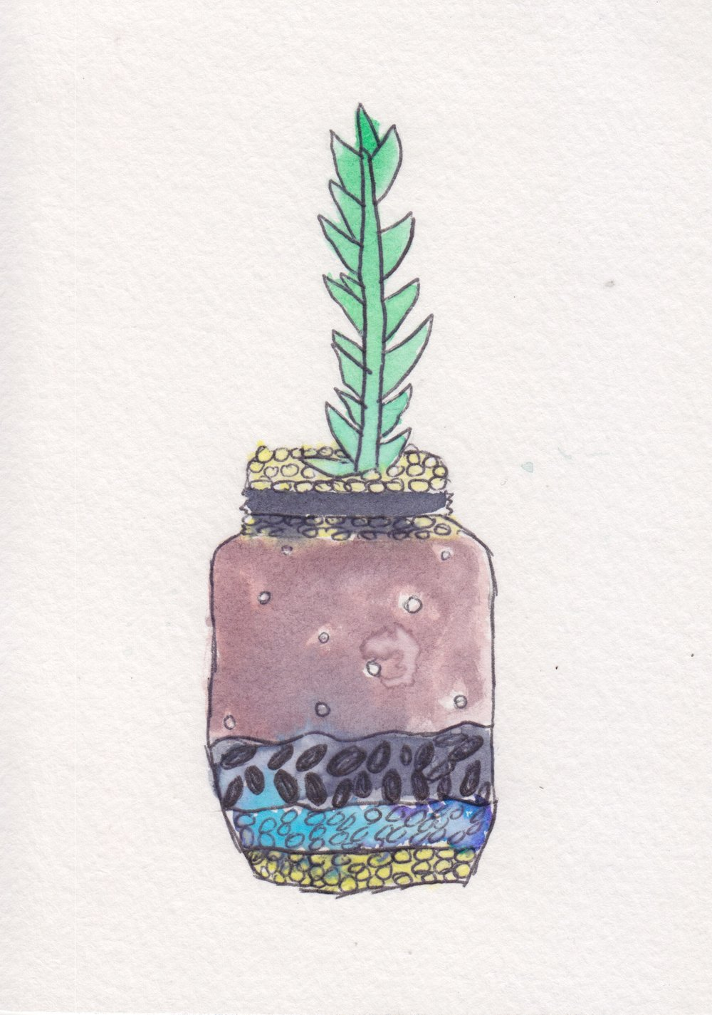 centro_watercolor terrarium_NicoleSaez02.jpeg