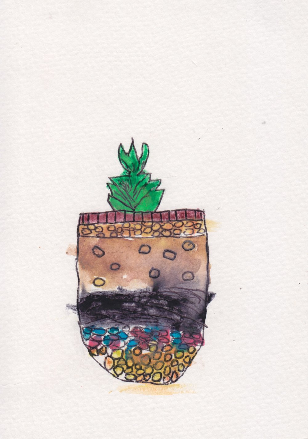 centro_watercolor terrarium_TanishaCruz.jpeg