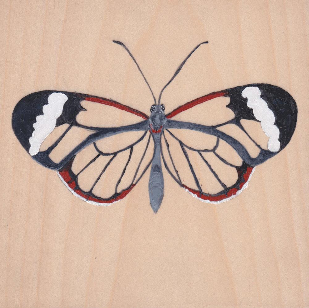 Greta Oto Butterfly_Painting on wood_01.jpg