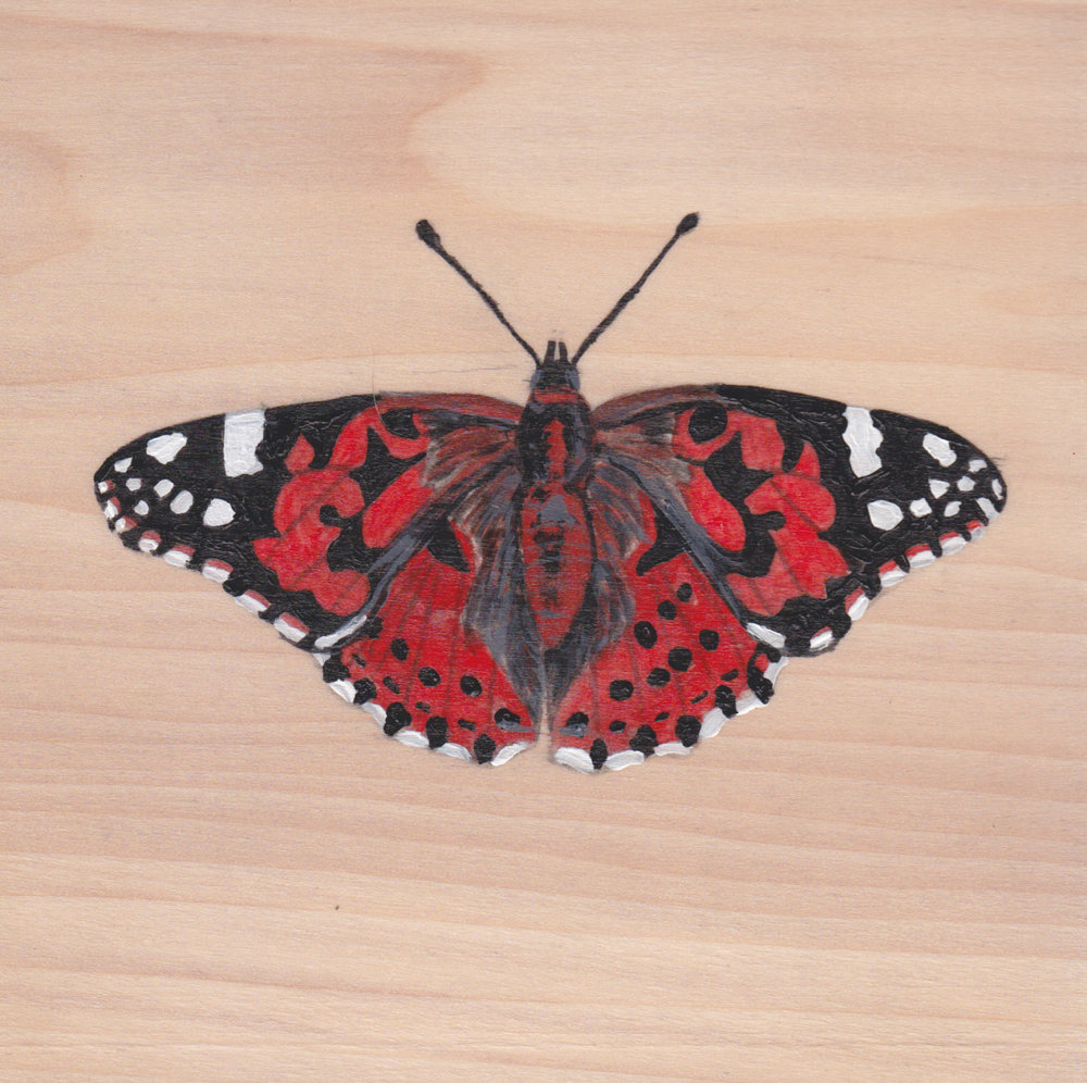 Vanessa Cardui Butterfly_Painting on wood_01.jpg