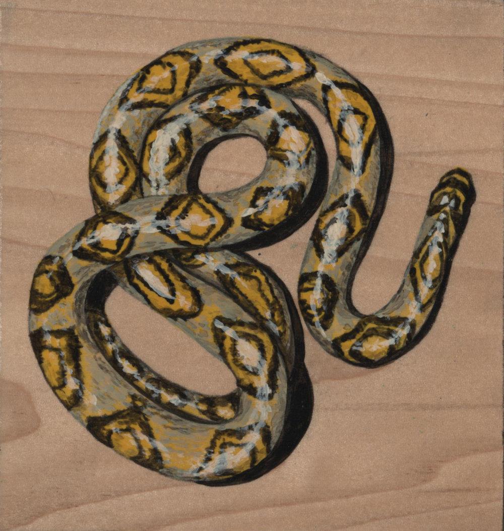 Euprepiophis Mandarinus Snake_Painting on wood_01.jpg
