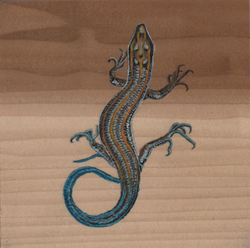 Plestiodon Fasciatus Lizard_Painting on wood_01.jpg