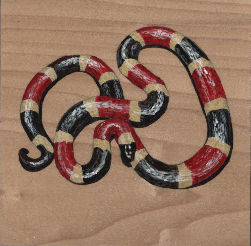 Micruroides Euryxanthus Snake_Painting on wood_01.jpg
