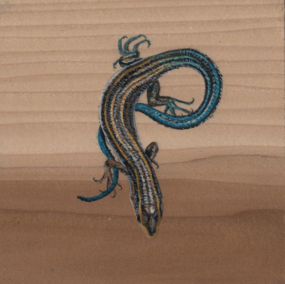 Plestiodon Fasciatus Lizard_Painting on wood_02.jpg