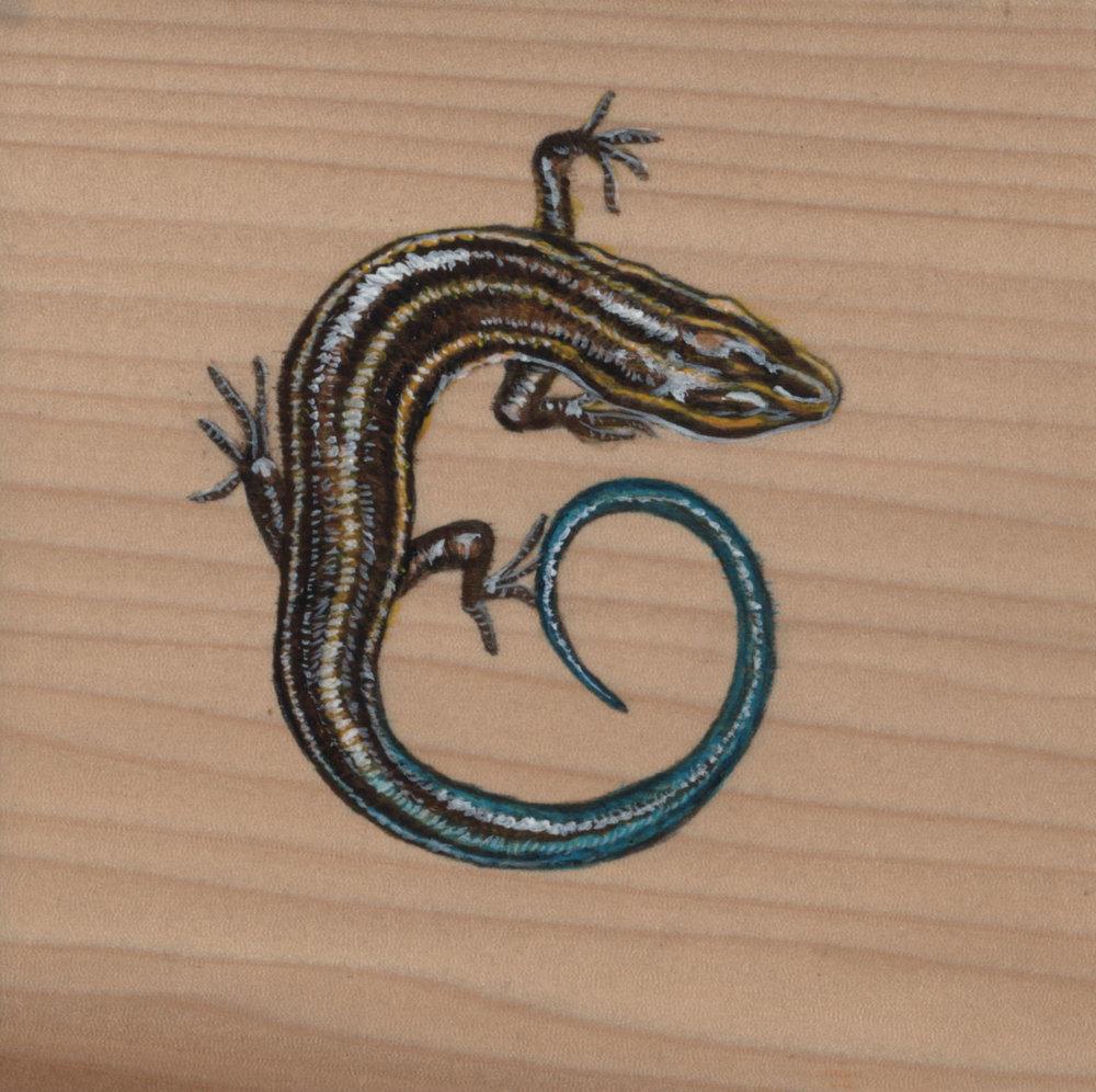 Plestiodon Inexpectatus Lizard_Painting on wood_02.jpg