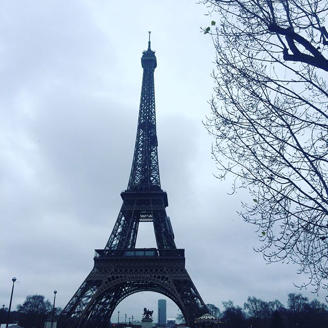 I was lucky enough to end 2017 in France, which was amazing and perfect, even in the cold ✨  I hope everyone's first week of 2018 is going spectacularly! And if you're on the east coast of the US like me, I hope you're staying warm! ❄️ . . . #writersofinstagram #authorsofinstagram #bookstagram #booknerdigans #ireadya #yalit
