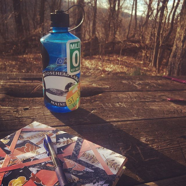 When you find the perfect writing spot 👌#blueridgeparkway . . . #authorlife #authorsofinstagram #ireadya #writersofinstagram #paintbrush #blazepublishing #bookstagram #amwriting