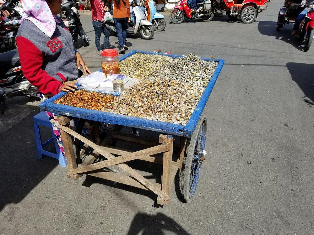 Cambodia2_3.jpg
