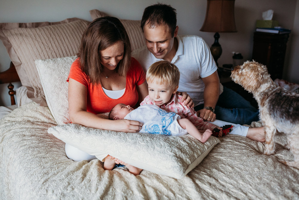 family of 4 with dog on bed with newborn baby girl and toddler boy