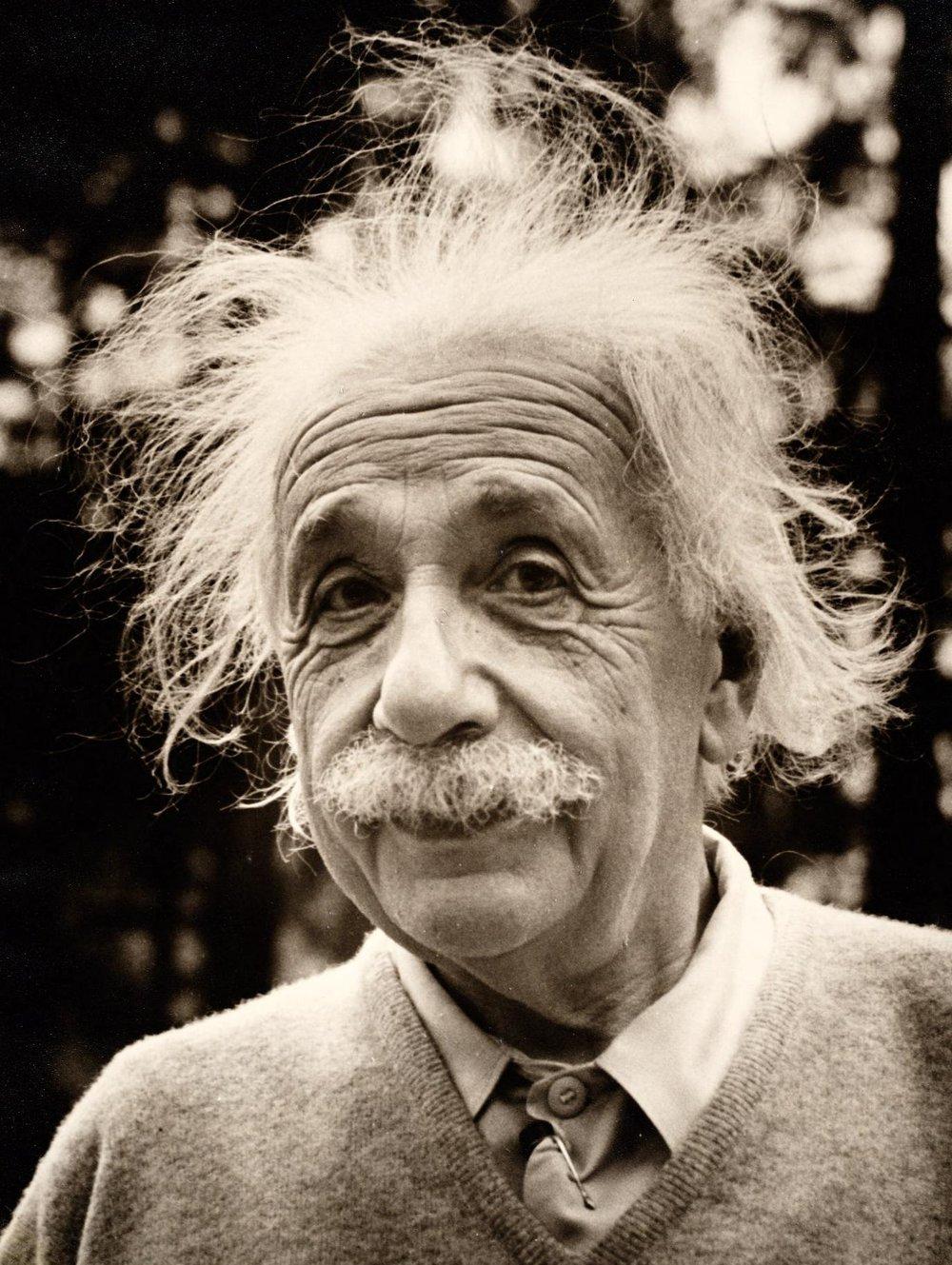 Albert Einstein ft. his crazy hair