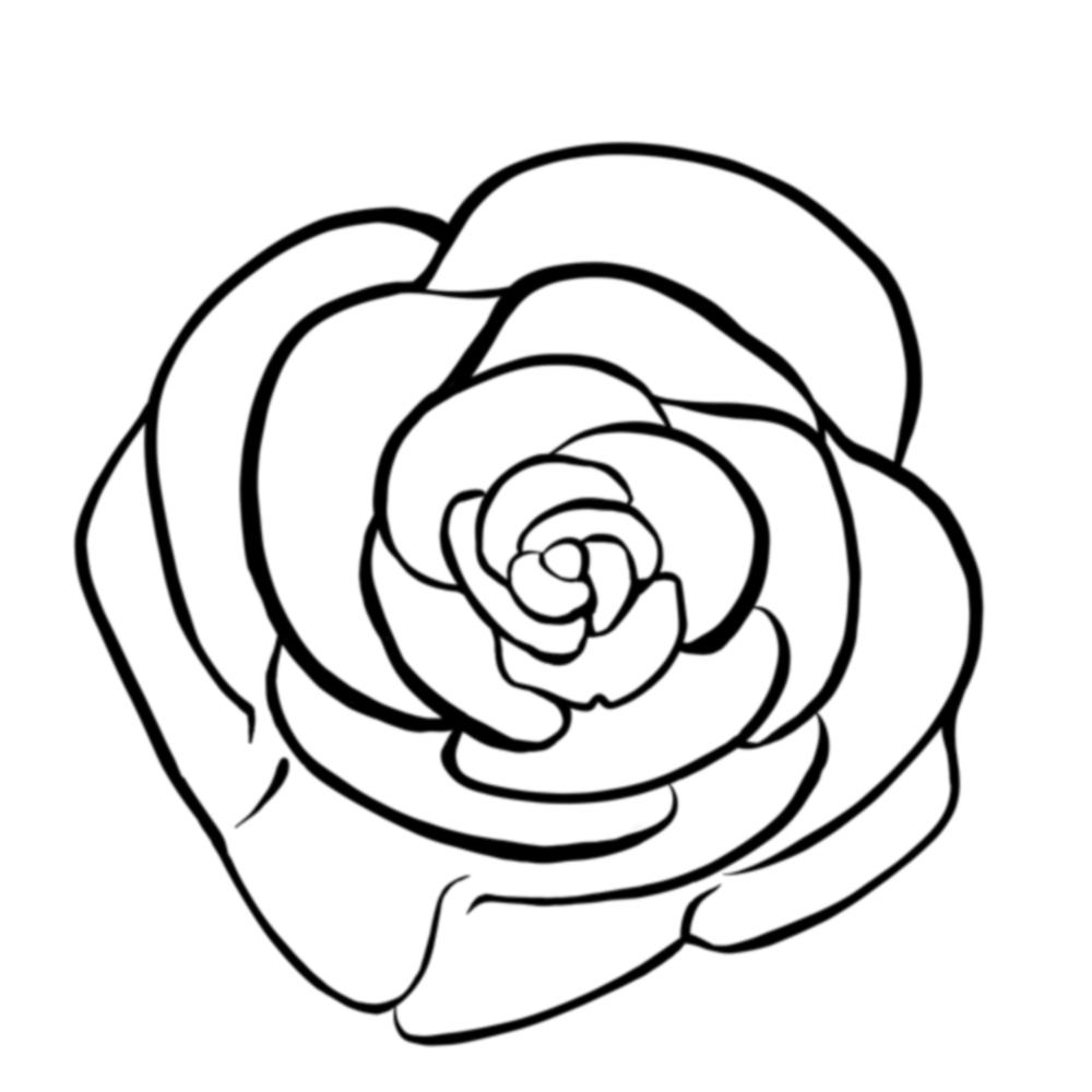 RoseCommissionOutline