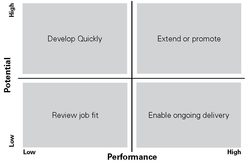 Figure 1. Performance and Potential Quadrant