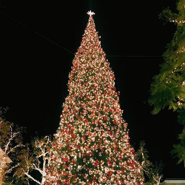 The Grove in Los Angeles  #tree #holidays #happyholidays #losangeles #la #beverlyhills #luxury #shopping