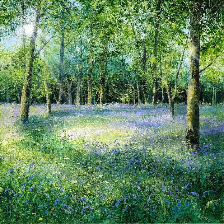 Bluebells-in-the-Glade_720x.jpg
