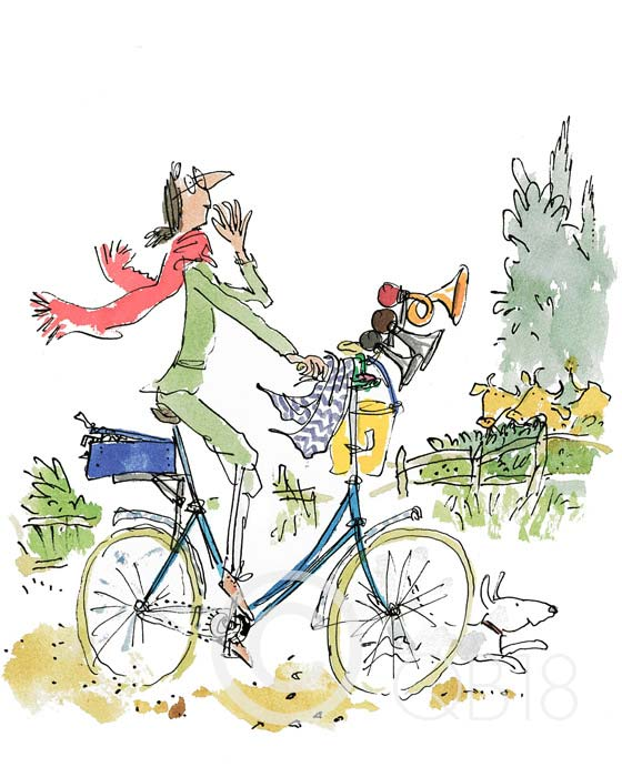 QB9003-Quentin-Blake-What-this-bike-needs-said-Mrs-Armitage-Collectors-Edition-Print.jpg
