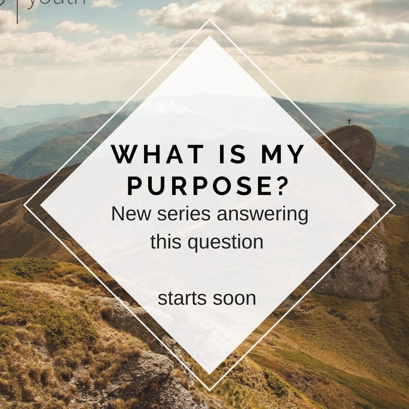 Current Series:What is my Purpose? -