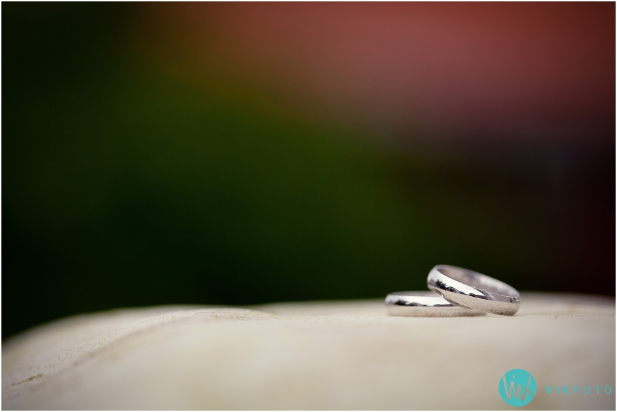 bryllupsfotograf_%C3%B8stfold_bryllupsbilde_35.jpg