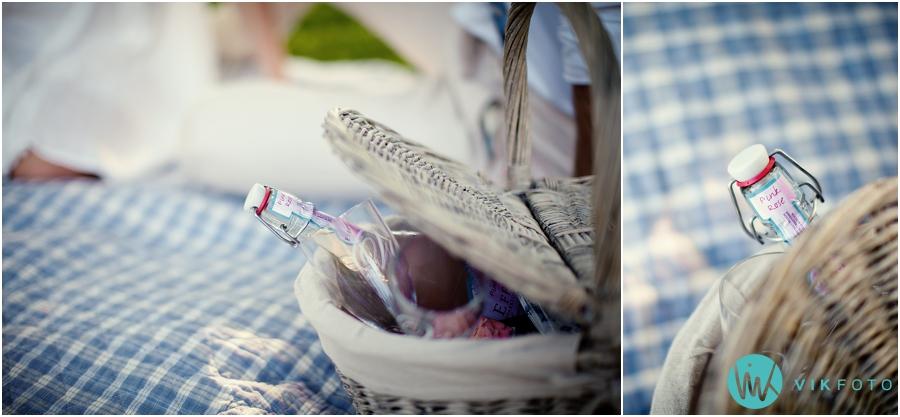 02-fotografering-picnic-pink-rose-drikke.jpg