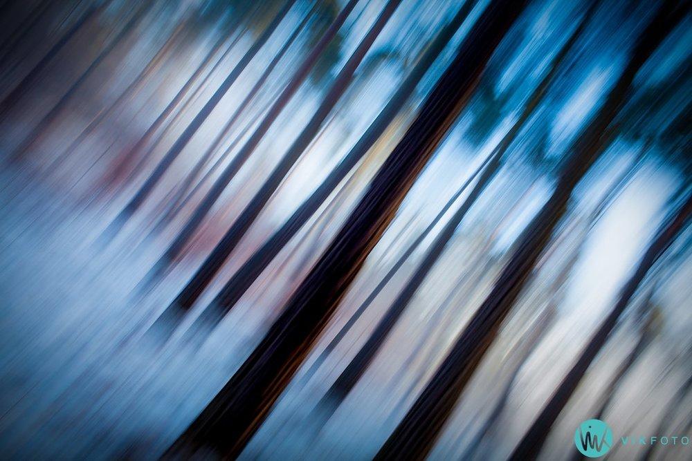 natur-foto-lang-lukkertid-bevegelse