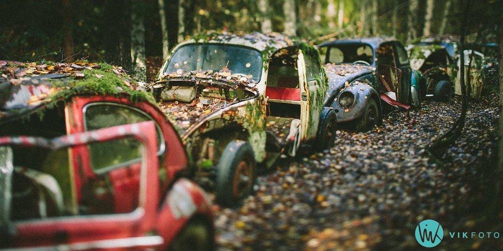 03-vikfoto-bilkirkegård-bilvrak-vrakpant-rusten-bil