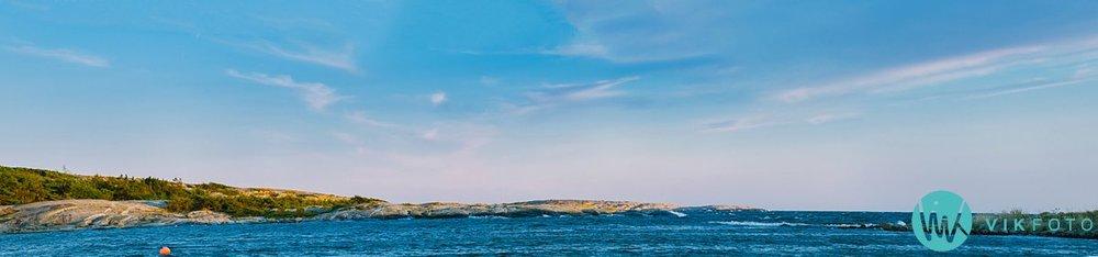 39-hvaler-windsurfing-brettseiling-ørekroken