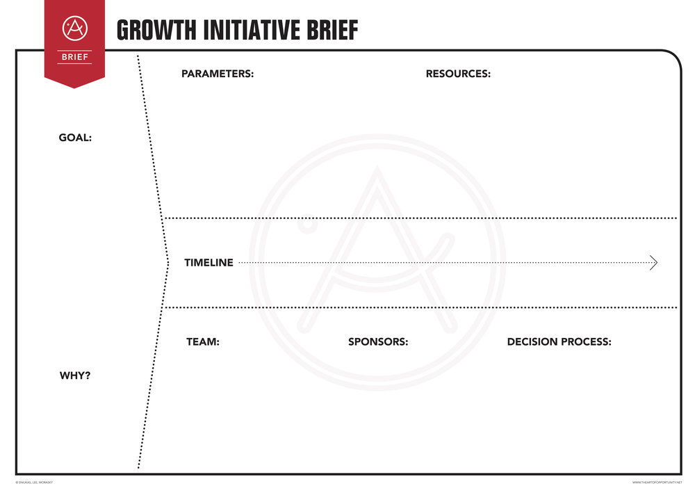 Template: The Growth Initiative Brief