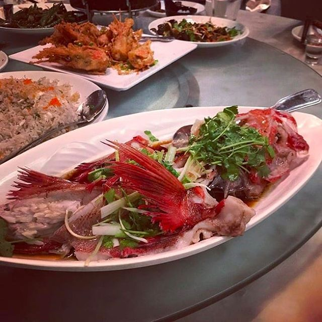 Feel like seafood? We have an incredible selection of fresh seafood that is sure to impress! . 📷: @sophie1024 . . . #friday #weekend #friyay #seafood #wholefish #freshseafood #dolorestaurant #dolochicago #chinatownchicago #dimsum #chinesefood #cantonesefood #yummy #foodie #tasty #Hungry #foodpics #foodpic #foodphotography #chicagofoodauthority #chicagofood #Chicagoeats #chicagolife #chicagofoodie #instachicago #312food #Food