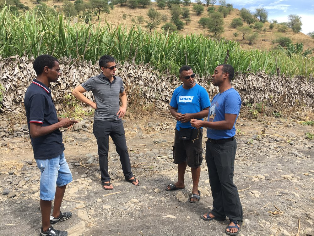 Gil Querido (far right), our partner in all things Cape Verde, speaks with Bill and two of our partner farmers, Ta and Lino, about the scale and size of our passion fruit plantation.
