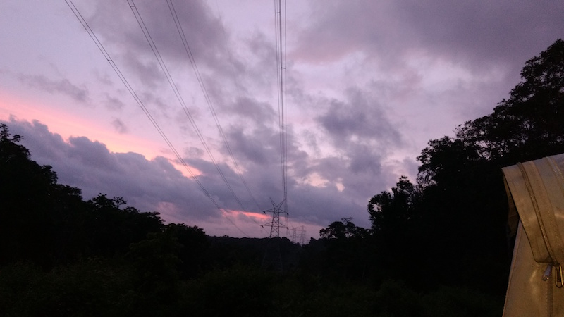 Numerous trees in the Dubare Forest were felled to make way for these high-tension power lines.