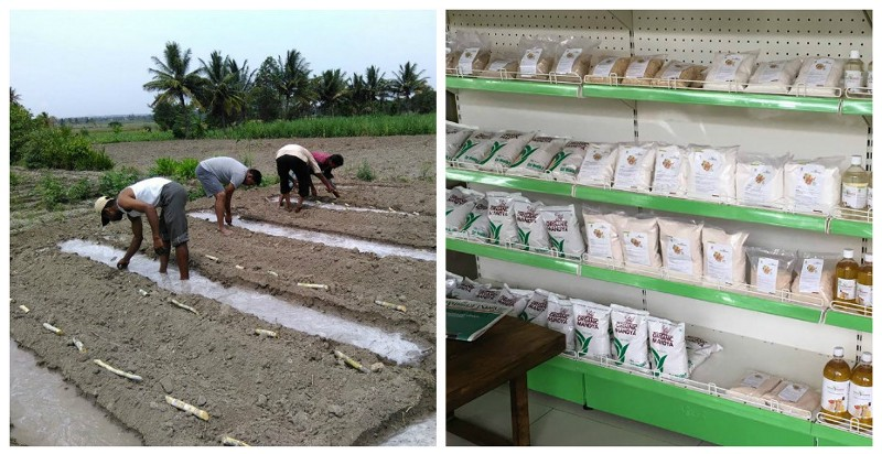 Left: Organic farming; Right: Organic produce at the Organic Mandya store Source: Facebook