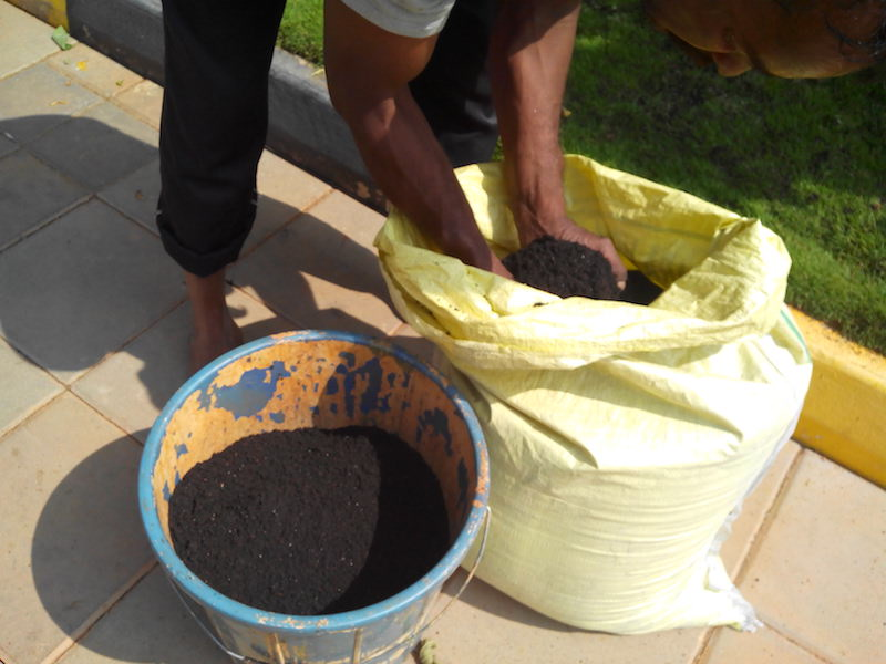 With a little effort, you can turn wet waste into loads of organic manure. Image: Author
