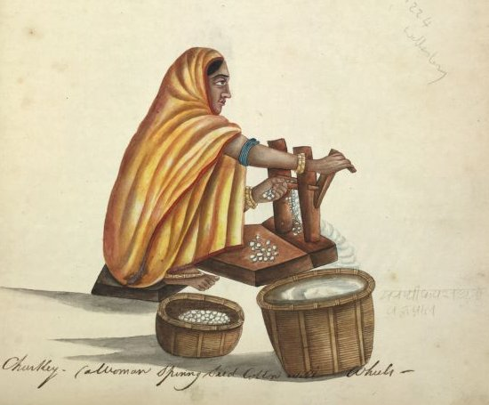 A woman ginning cotton Source: Wikimedia Commons