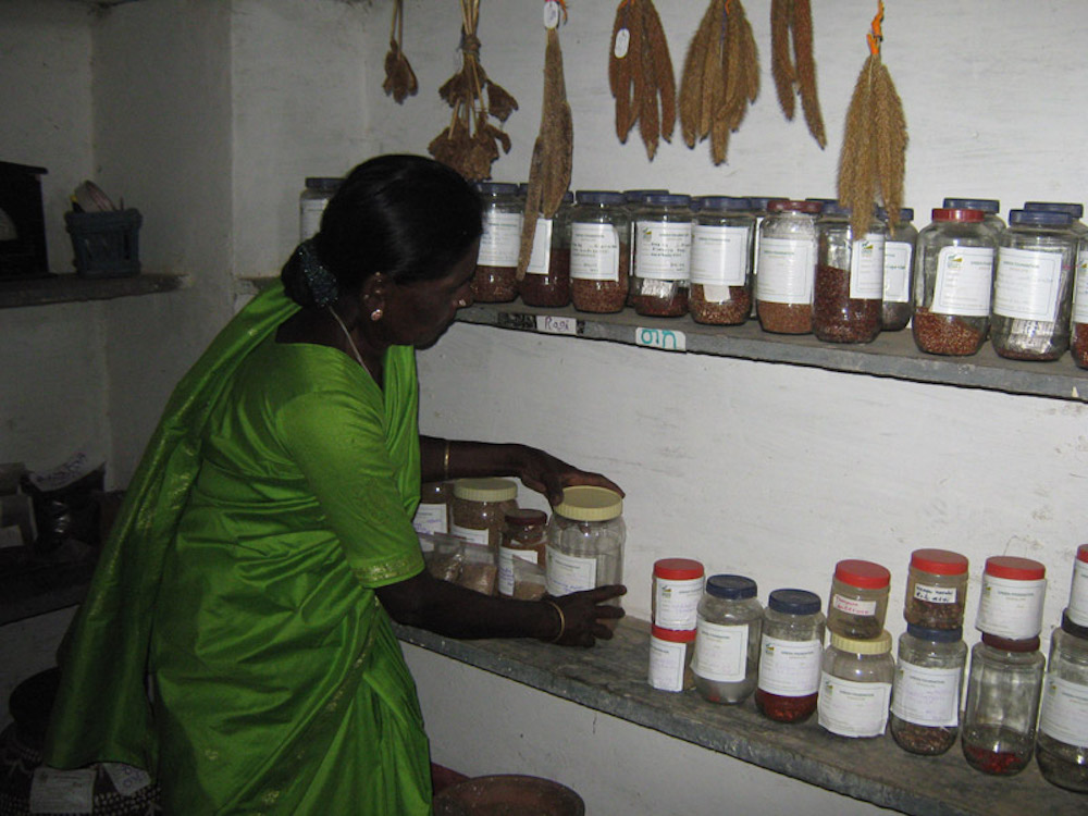 Inside a community seed bank. Source:  GREEN Foundation
