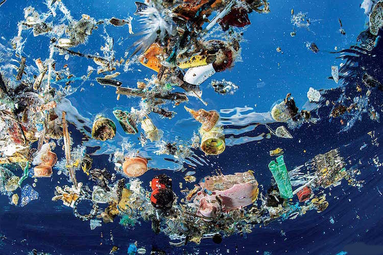Art School Project On Plastic Pollution