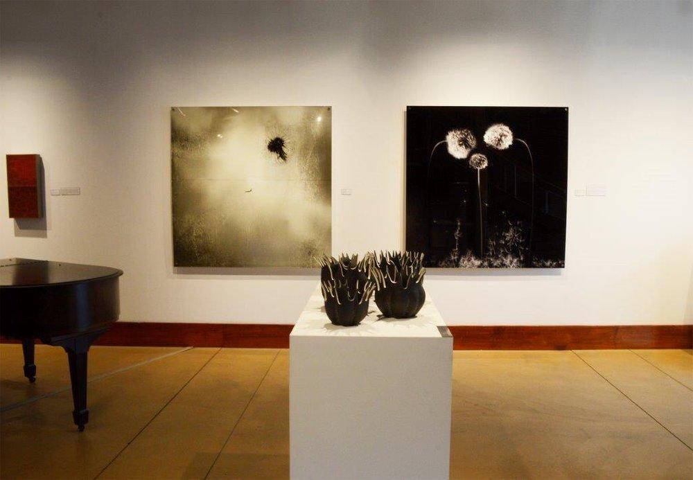 James Gallery.jpg