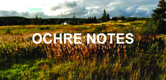 OCHRE NOTES
