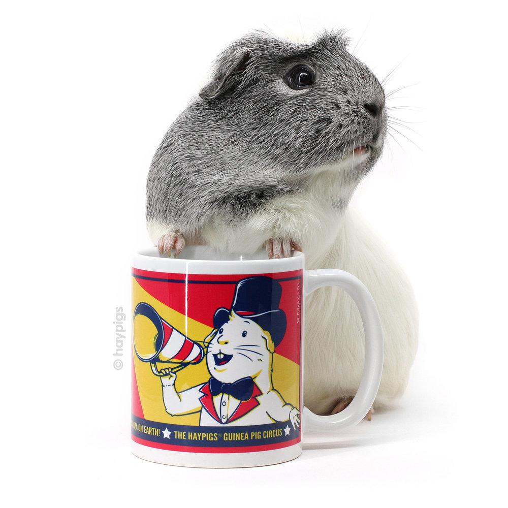 hay tutorial pig youtube rack diy easy piggypalace guinea watch feeder