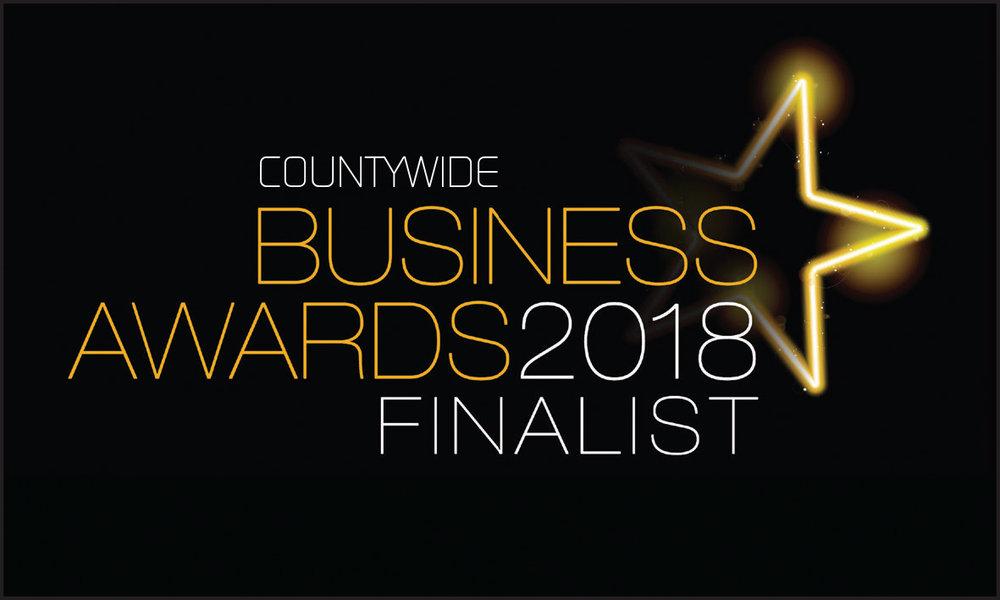 Countywide finalist logo 2018.jpg