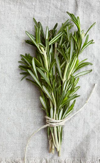 Rosemary  Is antimicrobial and antiseptic qualities that make it beneficial in efforts to eliminate eczema, dermatitis, oily skin, and acne.