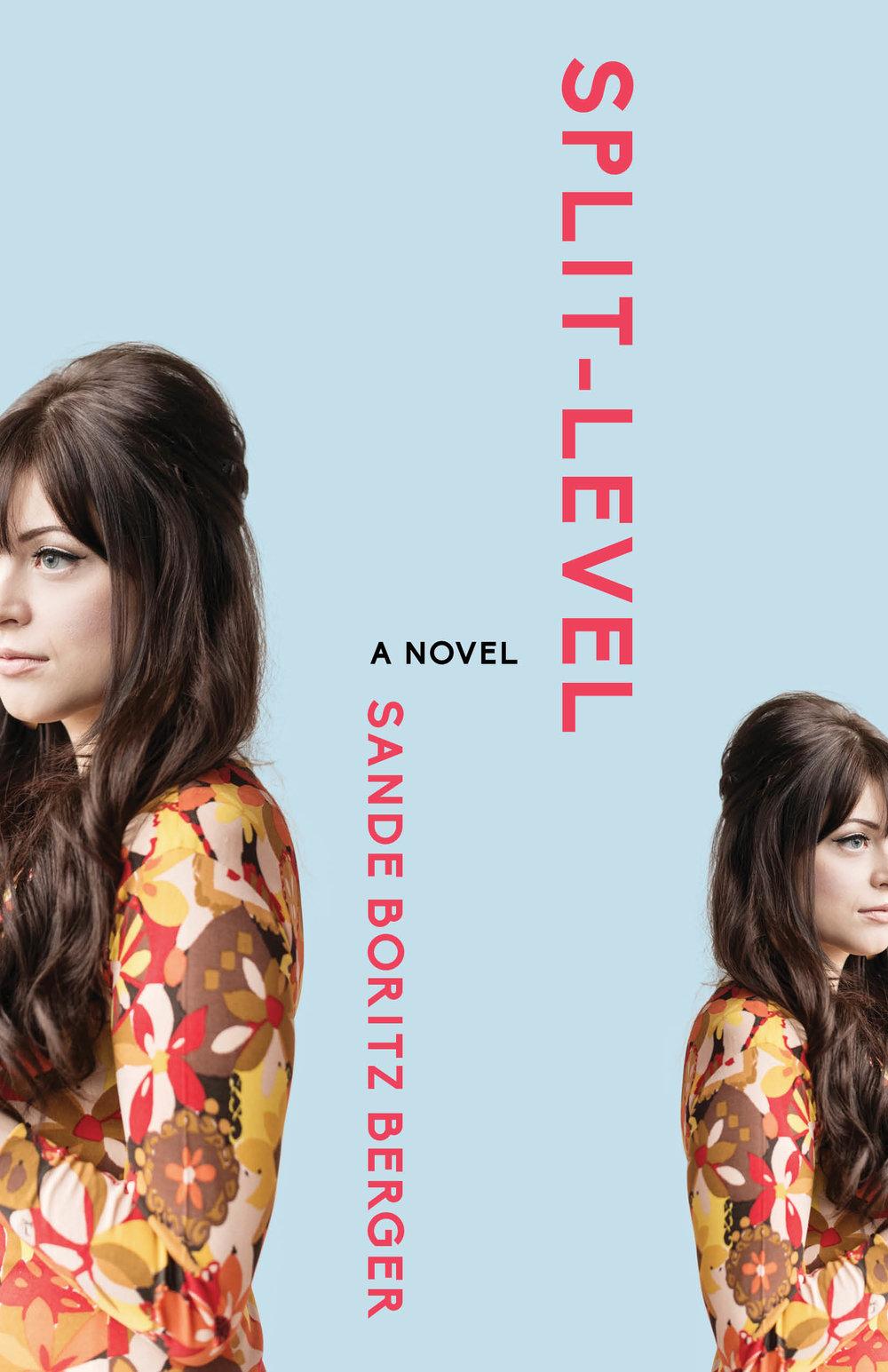 Split-Level Book Cover