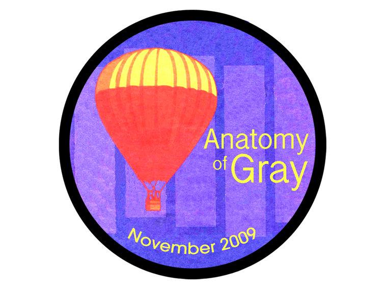 Anatomy of Gray — Brooke DeBetties