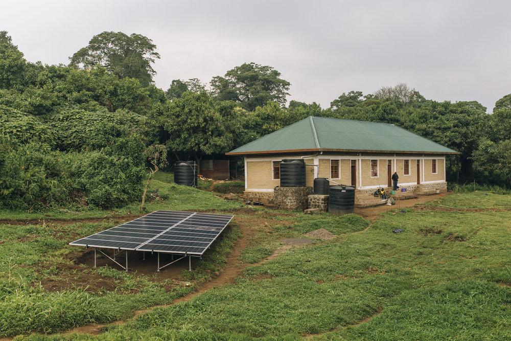 03 Virunga27sm.jpg