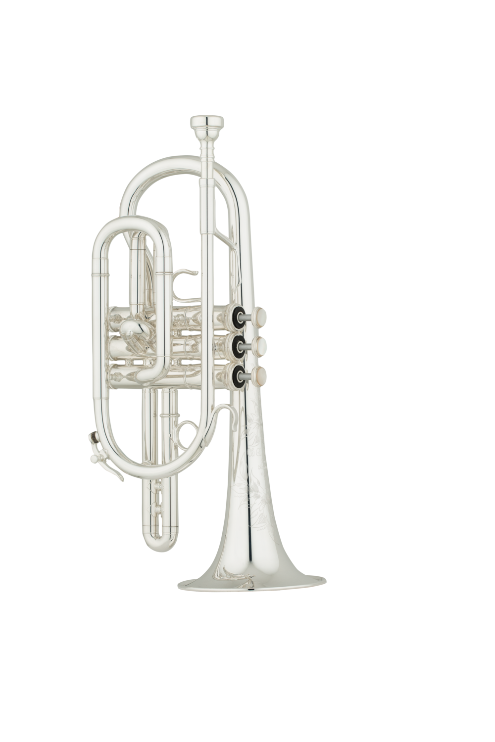 Shires_Cornet_CN7A_7ABb_Front_0917.png
