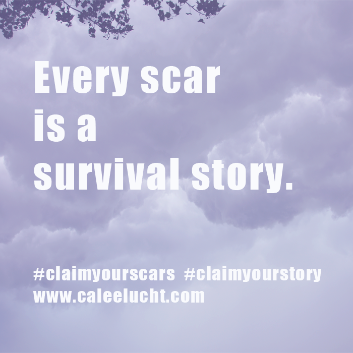 every scar.2017_02_02.png